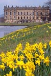 Photograph from Chatsworth  in Derbyshire