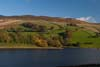 Photograph Upper Derwent Valley  in Derbyshire