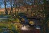 Photograph from Lawrence Field in Derbyshire - Padley Gorge