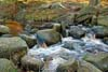 Photograph Padley Gorge  in Derbyshire