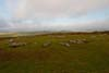 Photograph from arbor low Stone Circle  in Derbyshire